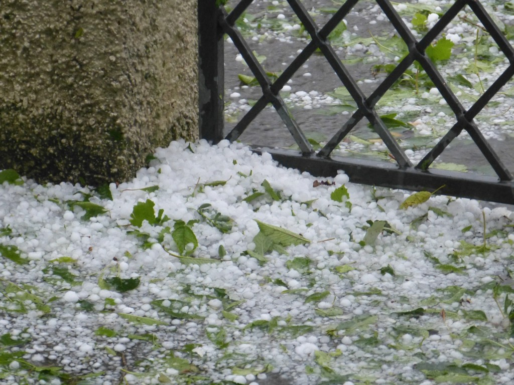 Hail bunched together in a small pile next to a garden gate.