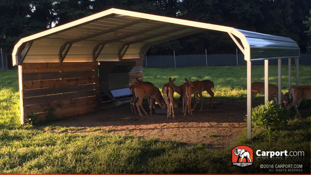 metal shelter with deer