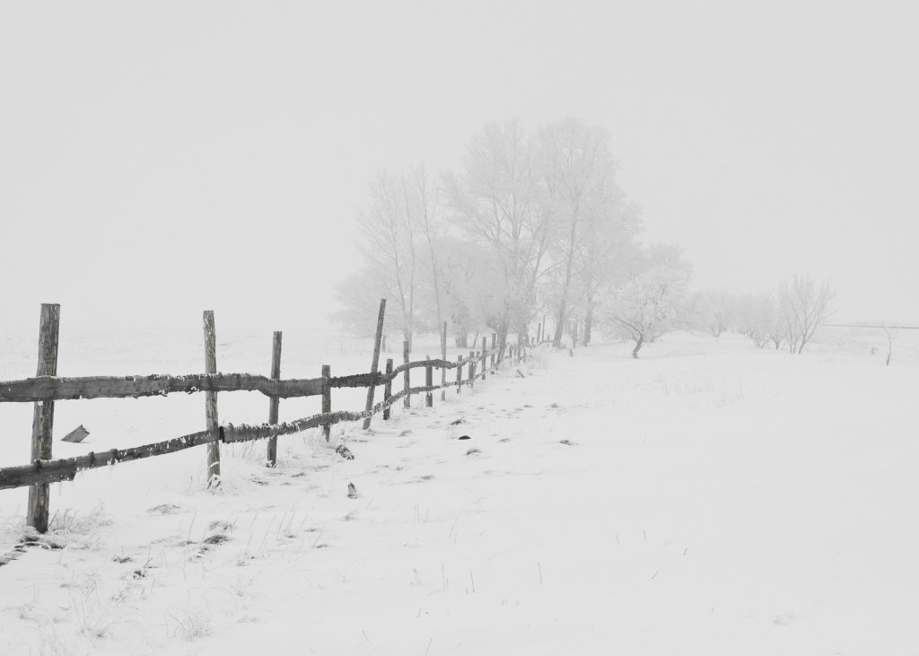 Snow covered country rode and fence
